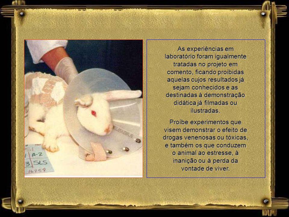 As experiências em laboratório foram igualmente tratadas no projeto em comento, ficando proibidas aquelas cujos resultados já sejam conhecidos e as destinadas à demonstração didática já filmadas ou ilustradas.