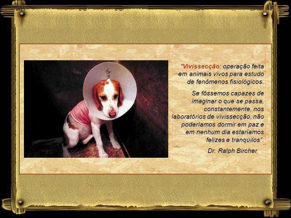 Dr. Ralph Bircher Vivissecção: operação feita em animais vivos para estudo de fenômenos fisiológicos.