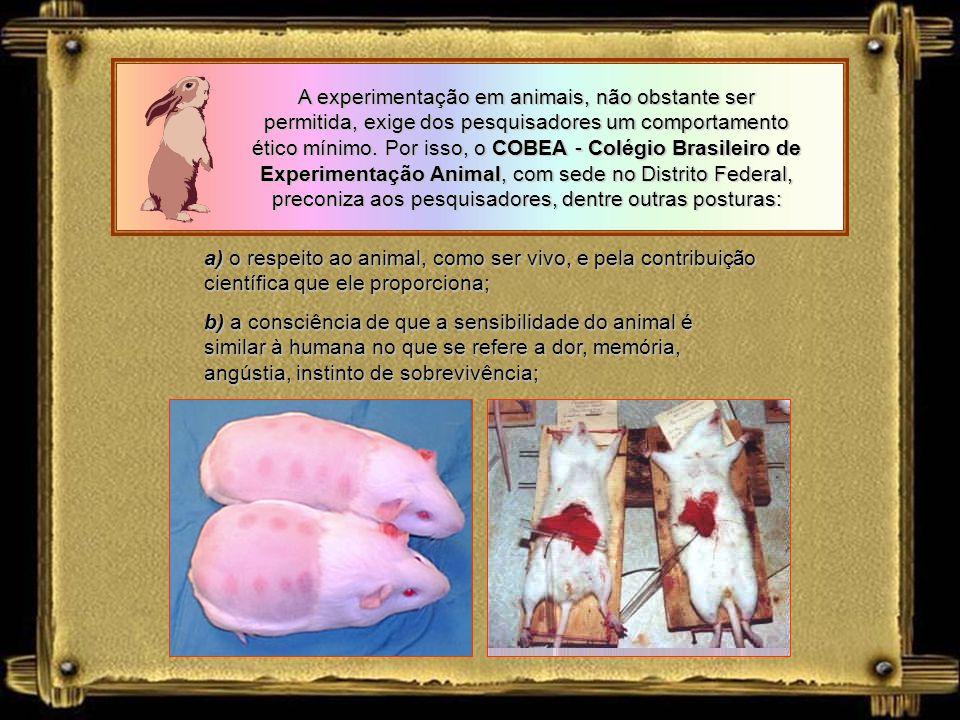A experimentação em animais, não obstante ser permitida, exige dos pesquisadores um comportamento ético mínimo. Por isso, o COBEA - Colégio Brasileiro de Experimentação Animal, com sede no Distrito Federal, preconiza aos pesquisadores, dentre outras posturas: