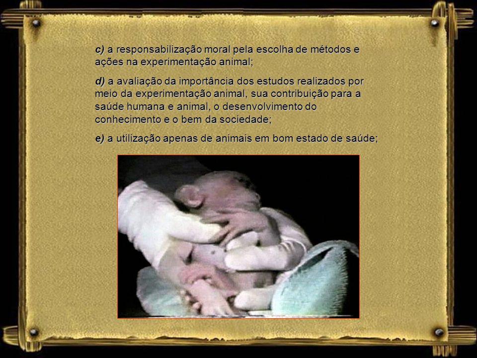 c) a responsabilização moral pela escolha de métodos e ações na experimentação animal;