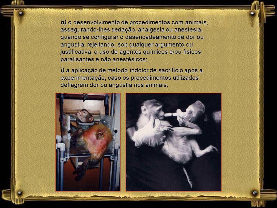 h) o desenvolvimento de procedimentos com animais, assegurando-lhes sedação, analgesia ou anestesia, quando se configurar o desencadeamento de dor ou angústia, rejeitando, sob qualquer argumento ou justificativa, o uso de agentes químicos e/ou físicos paralisantes e não anestésicos;