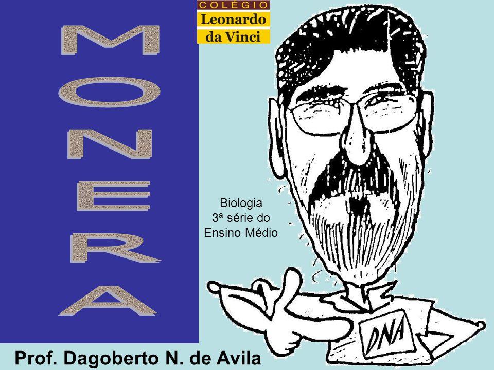 MONERA Prof. Dagoberto N. de Avila Biologia 3ª série do Ensino Médio