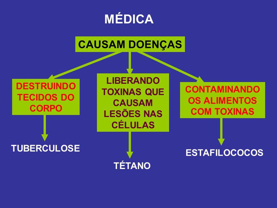 MÉDICA CAUSAM DOENÇAS LIBERANDO TOXINAS QUE CAUSAM LESÕES NAS CÉLULAS