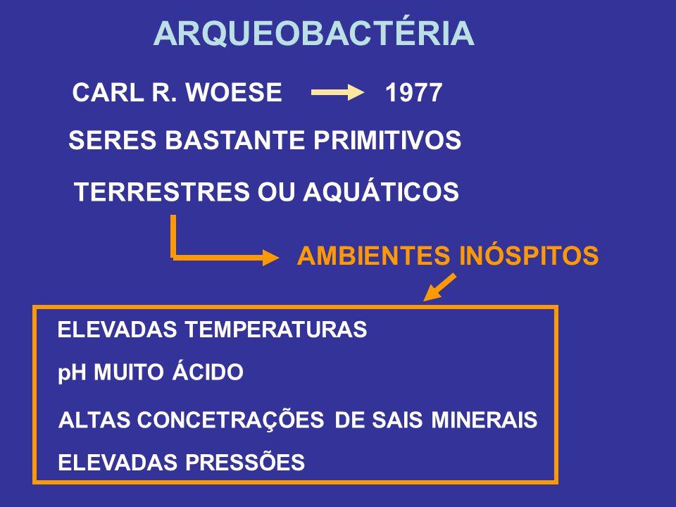 ARQUEOBACTÉRIA CARL R. WOESE 1977 SERES BASTANTE PRIMITIVOS