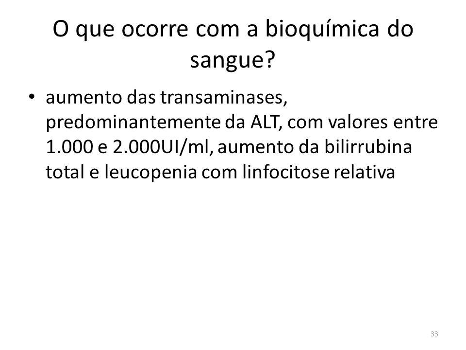 O que ocorre com a bioquímica do sangue