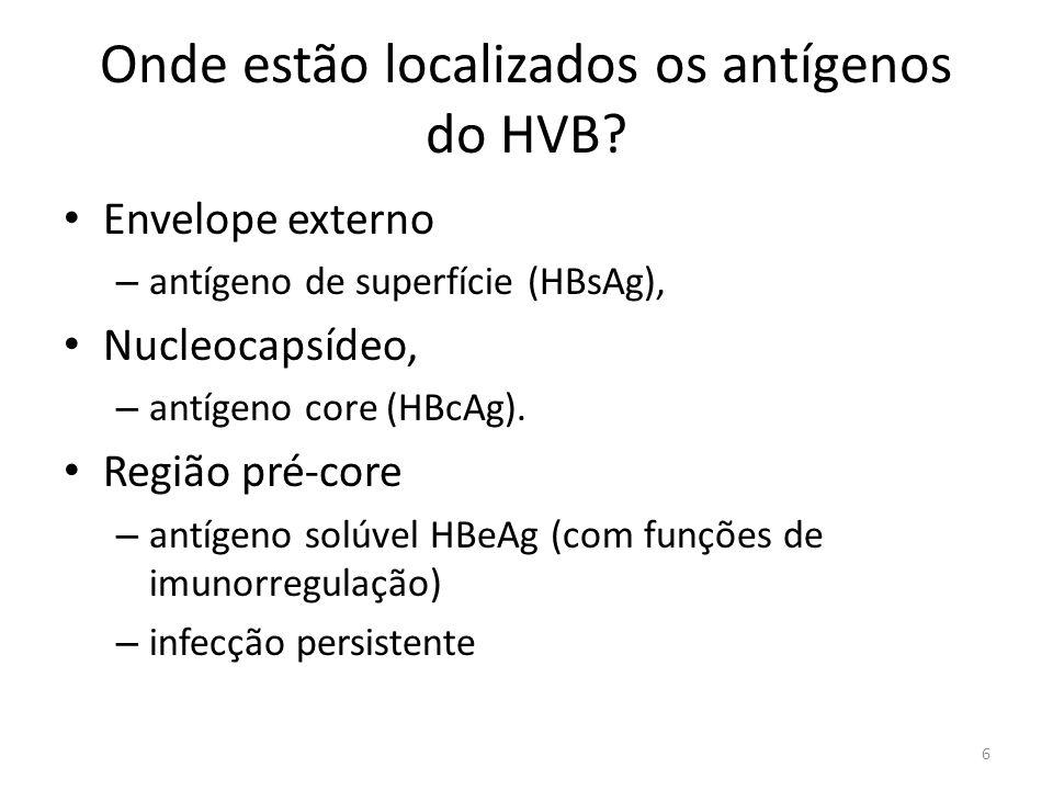 Onde estão localizados os antígenos do HVB
