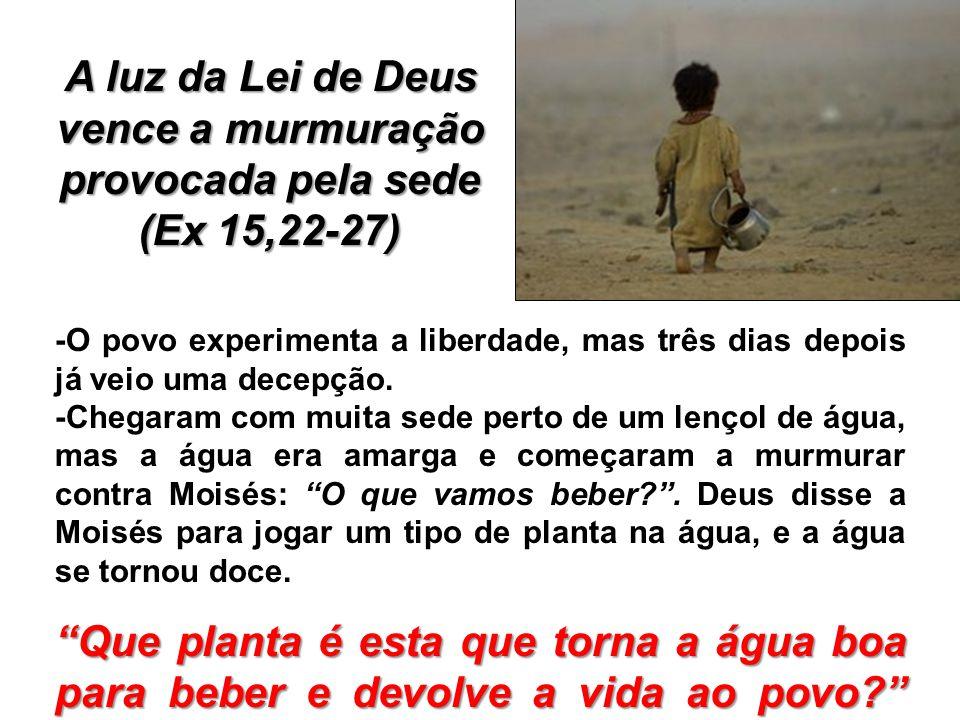 A luz da Lei de Deus vence a murmuração provocada pela sede