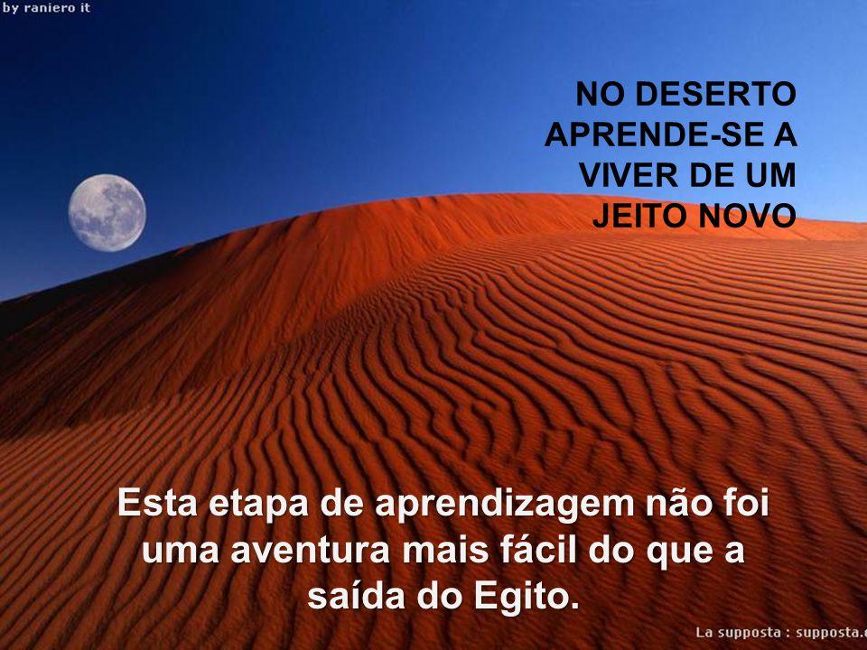 NO DESERTO APRENDE-SE A VIVER DE UM JEITO NOVO