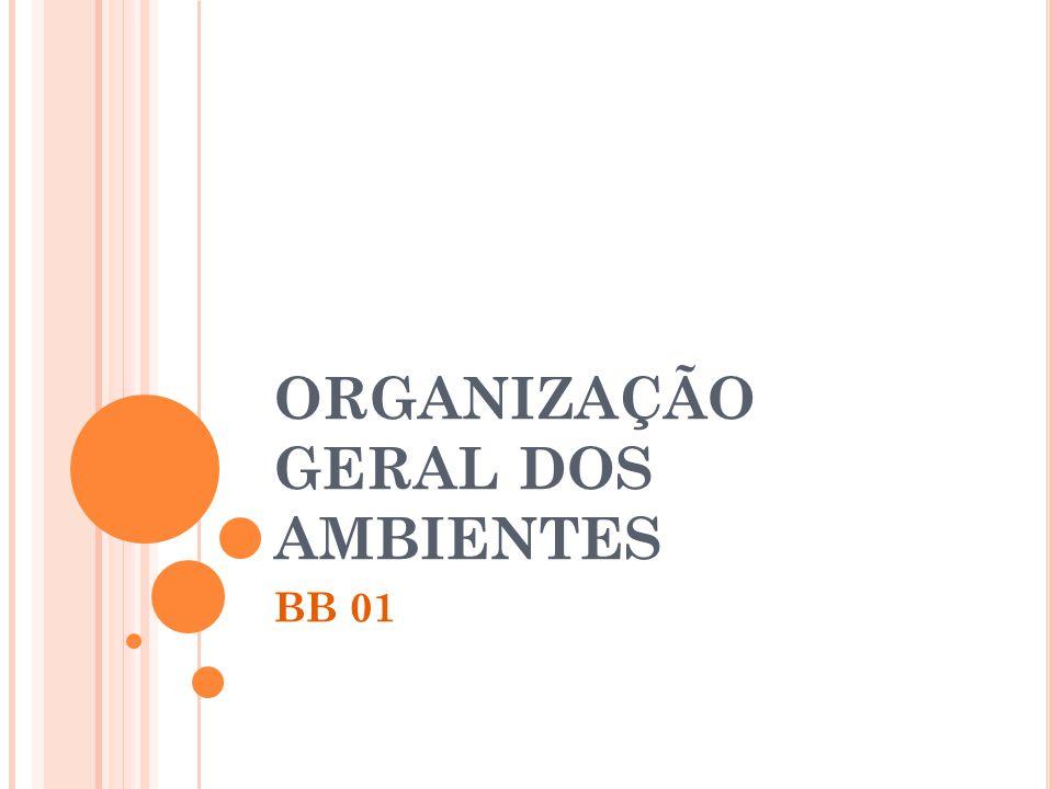 ORGANIZAÇÃO GERAL DOS AMBIENTES