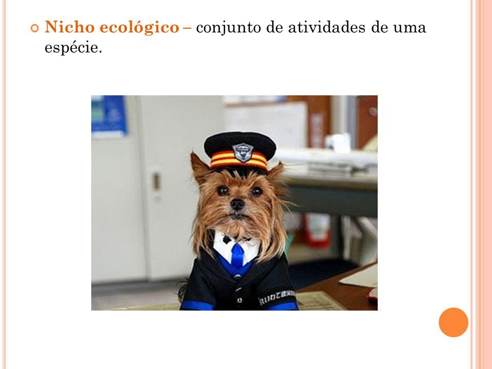 Nicho ecológico – conjunto de atividades de uma espécie.