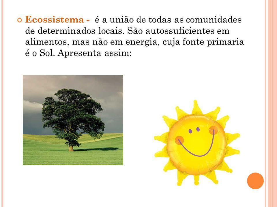 Ecossistema - é a união de todas as comunidades de determinados locais