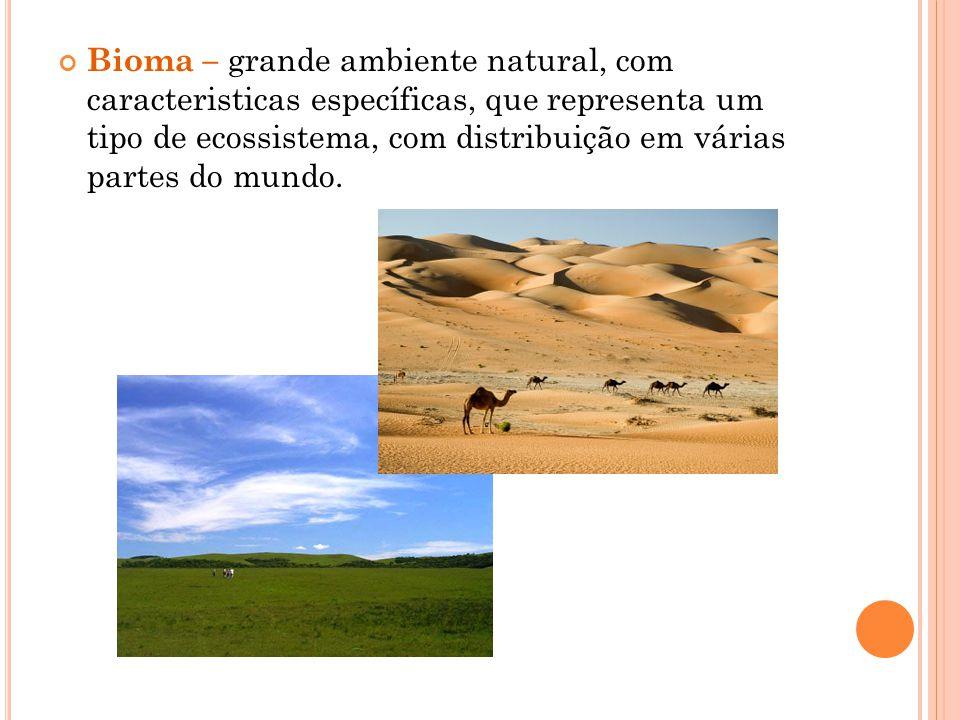 Bioma – grande ambiente natural, com caracteristicas específicas, que representa um tipo de ecossistema, com distribuição em várias partes do mundo.