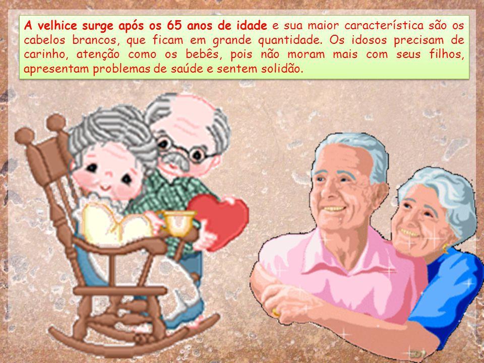 A velhice surge após os 65 anos de idade e sua maior característica são os cabelos brancos, que ficam em grande quantidade.