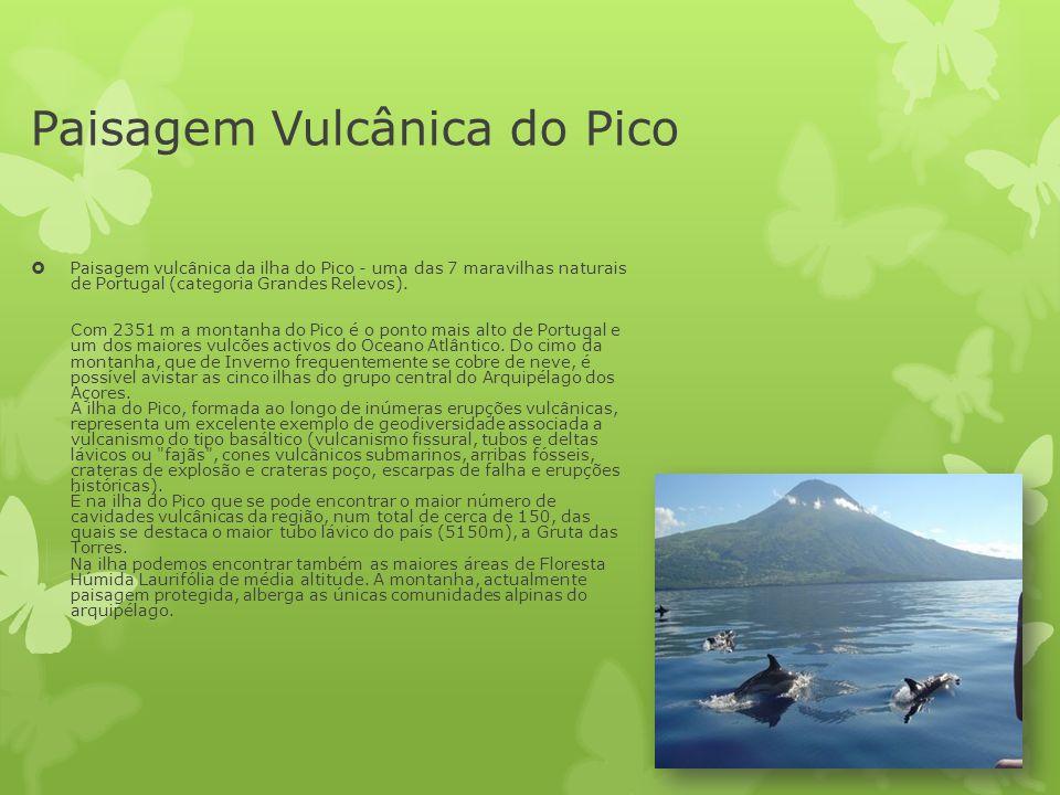 Paisagem Vulcânica do Pico