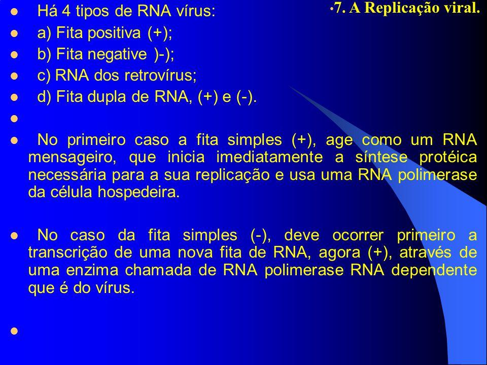 Há 4 tipos de RNA vírus: a) Fita positiva (+); b) Fita negative )-); c) RNA dos retrovírus; d) Fita dupla de RNA, (+) e (-).