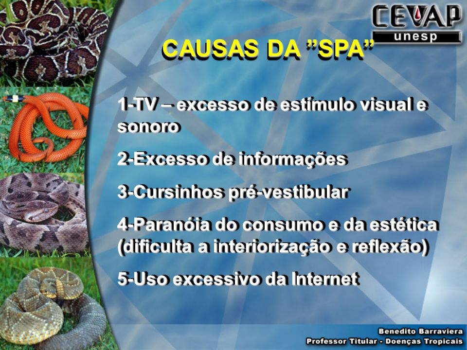 CAUSAS DA SPA 1-TV – excesso de estímulo visual e sonoro