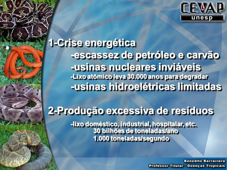 -escassez de petróleo e carvão -usinas nucleares inviáveis