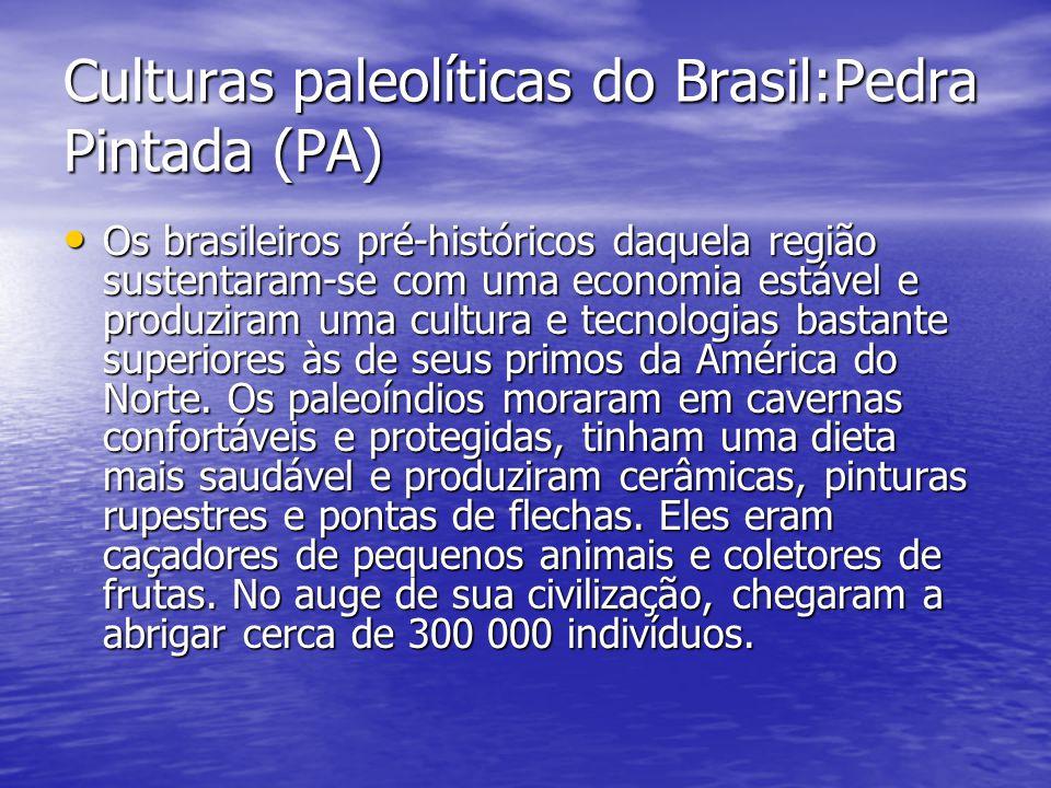 Culturas paleolíticas do Brasil:Pedra Pintada (PA)