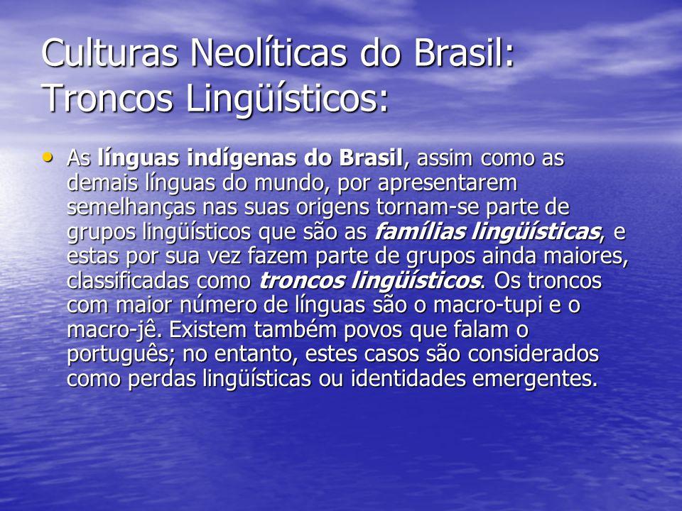 Culturas Neolíticas do Brasil: Troncos Lingüísticos: