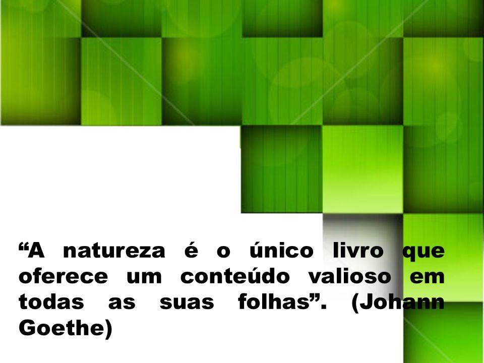 A natureza é o único livro que oferece um conteúdo valioso em todas as suas folhas .