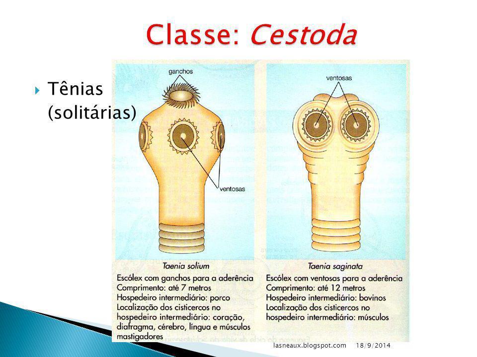 Classe: Cestoda Tênias (solitárias) lasneaux.blogspot.com 02/04/2017