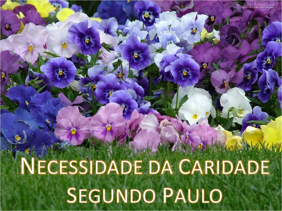 NECESSIDADE DA CARIDADE SEGUNDO PAULO