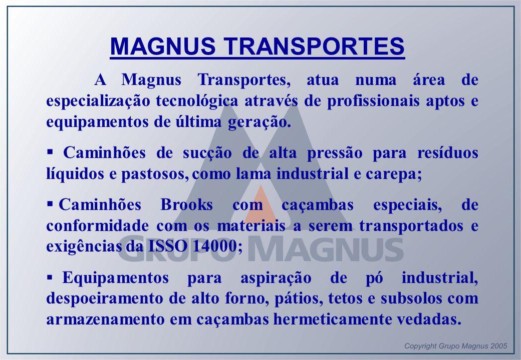 MAGNUS TRANSPORTES