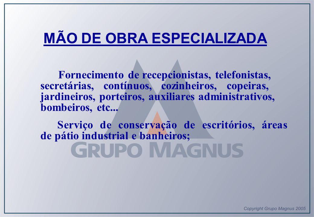 MÃO DE OBRA ESPECIALIZADA