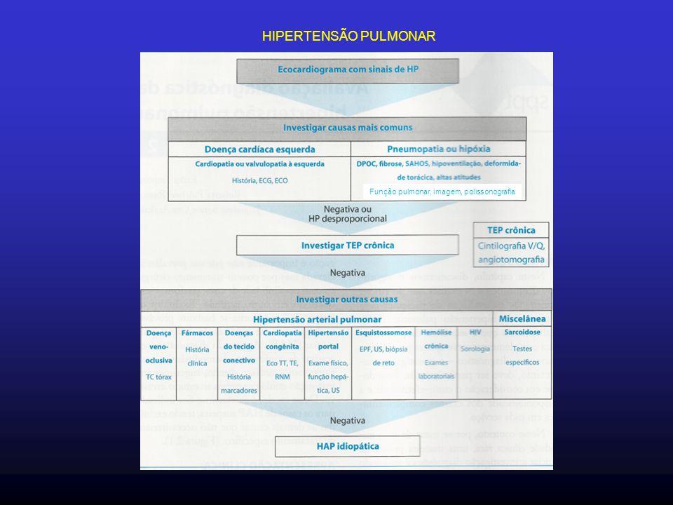 Função pulmonar, imagem, polissonografia