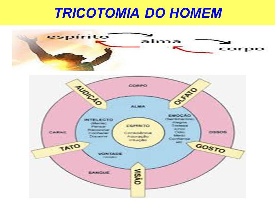 TRICOTOMIA DO HOMEM