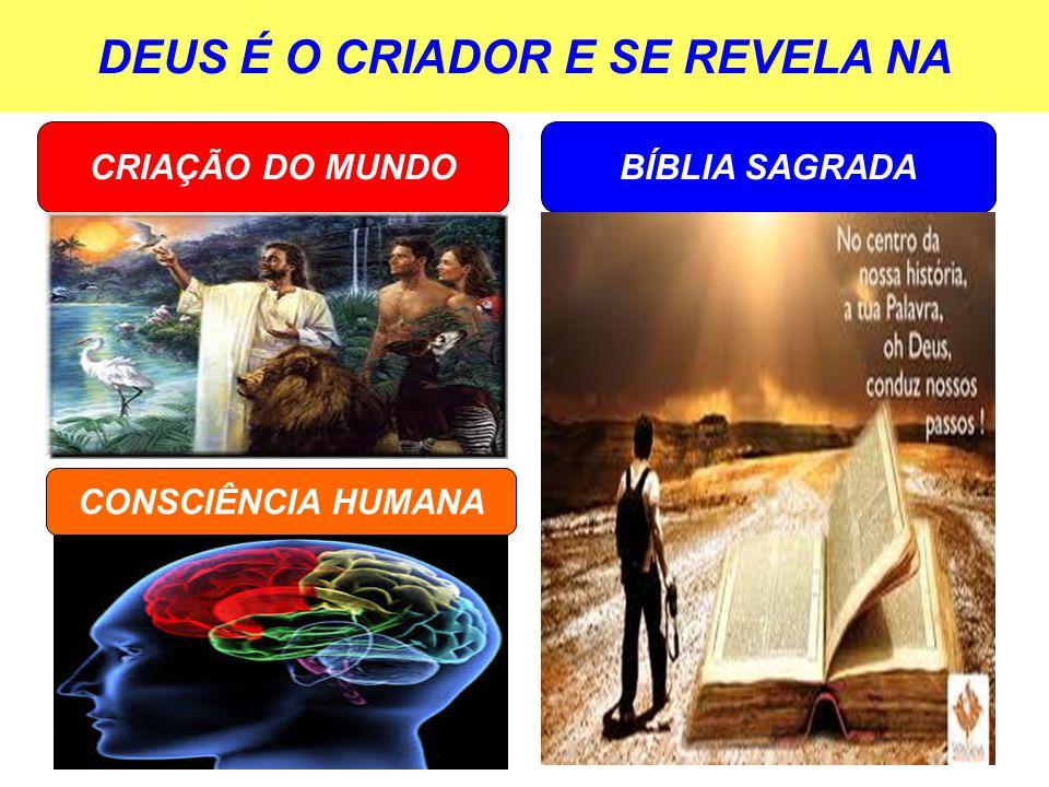 DEUS É O CRIADOR E SE REVELA NA