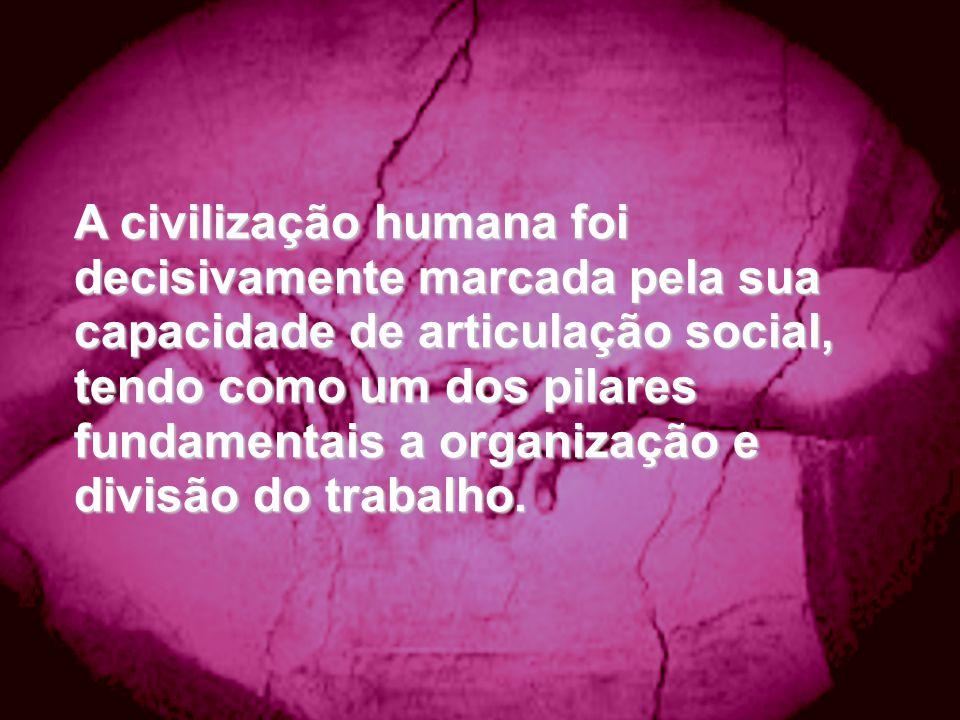 A civilização humana foi decisivamente marcada pela sua capacidade de articulação social, tendo como um dos pilares fundamentais a organização e divisão do trabalho.