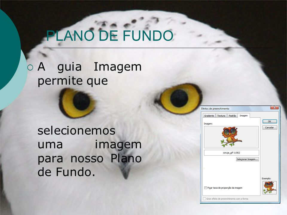 PLANO DE FUNDO A guia Imagem permite que