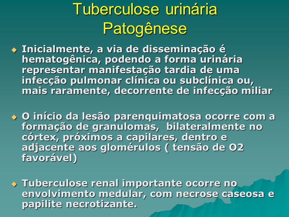 Tuberculose urinária Patogênese