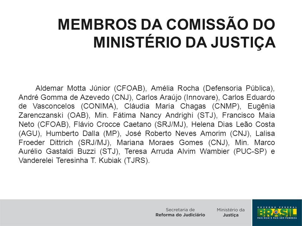 MEMBROS DA COMISSÃO DO MINISTÉRIO DA JUSTIÇA