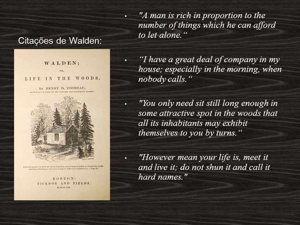 Citações de Walden: A man is rich in proportion to the number of things which he can afford to let alone.