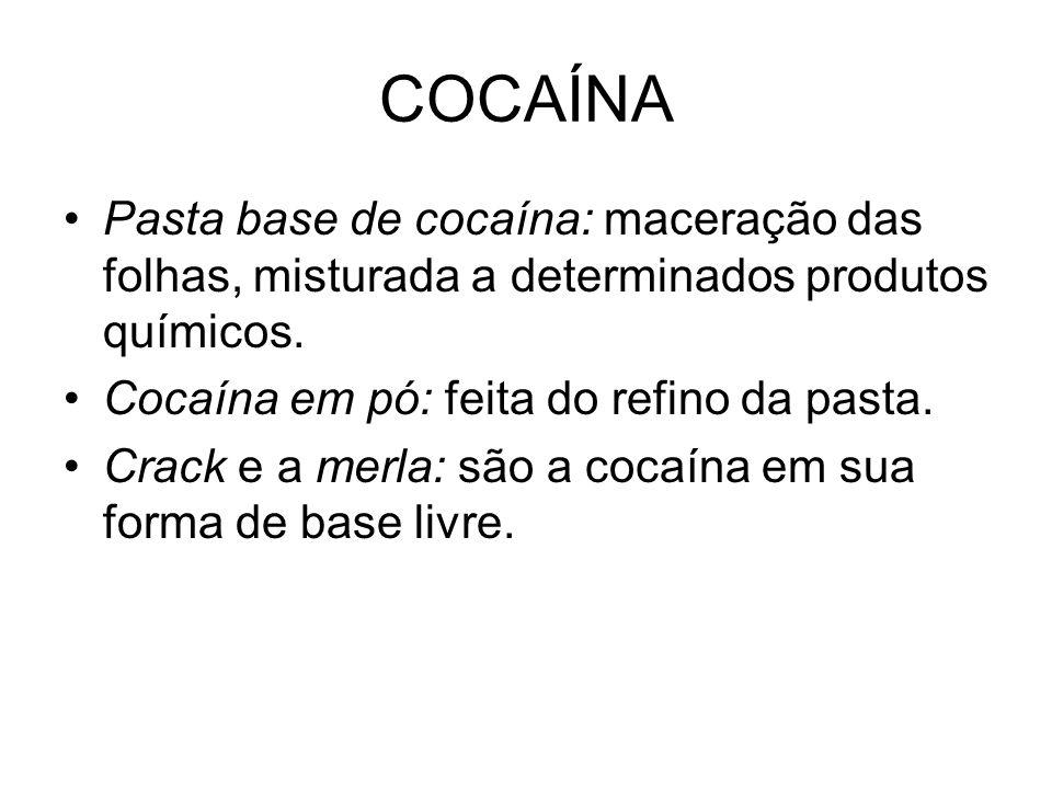COCAÍNA Pasta base de cocaína: maceração das folhas, misturada a determinados produtos químicos. Cocaína em pó: feita do refino da pasta.