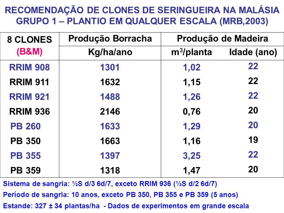 8 CLONES (B&M) Produção Borracha Produção de Madeira Kg/ha/ano