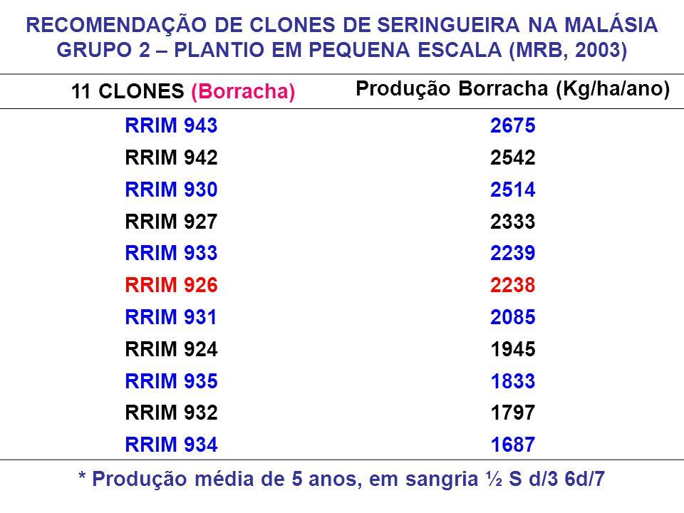 Produção Borracha (Kg/ha/ano) RRIM 943 2675 RRIM 942 2542 RRIM 930