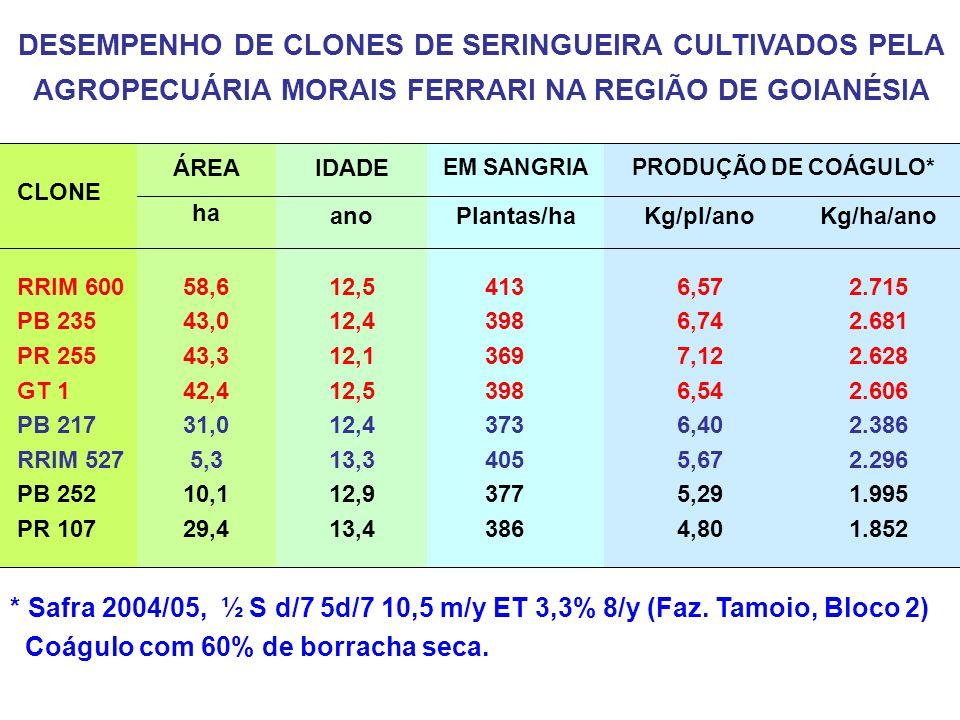 DESEMPENHO DE CLONES DE SERINGUEIRA CULTIVADOS PELA AGROPECUÁRIA MORAIS FERRARI NA REGIÃO DE GOIANÉSIA