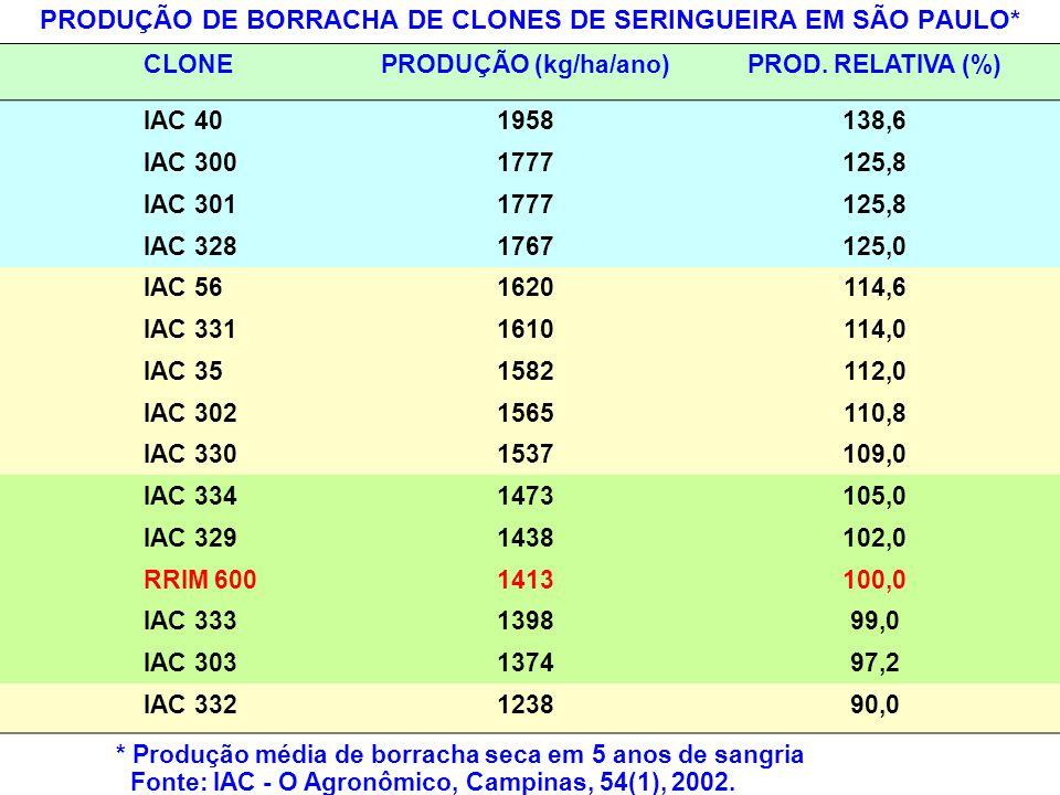 PRODUÇÃO DE BORRACHA DE CLONES DE SERINGUEIRA EM SÃO PAULO*