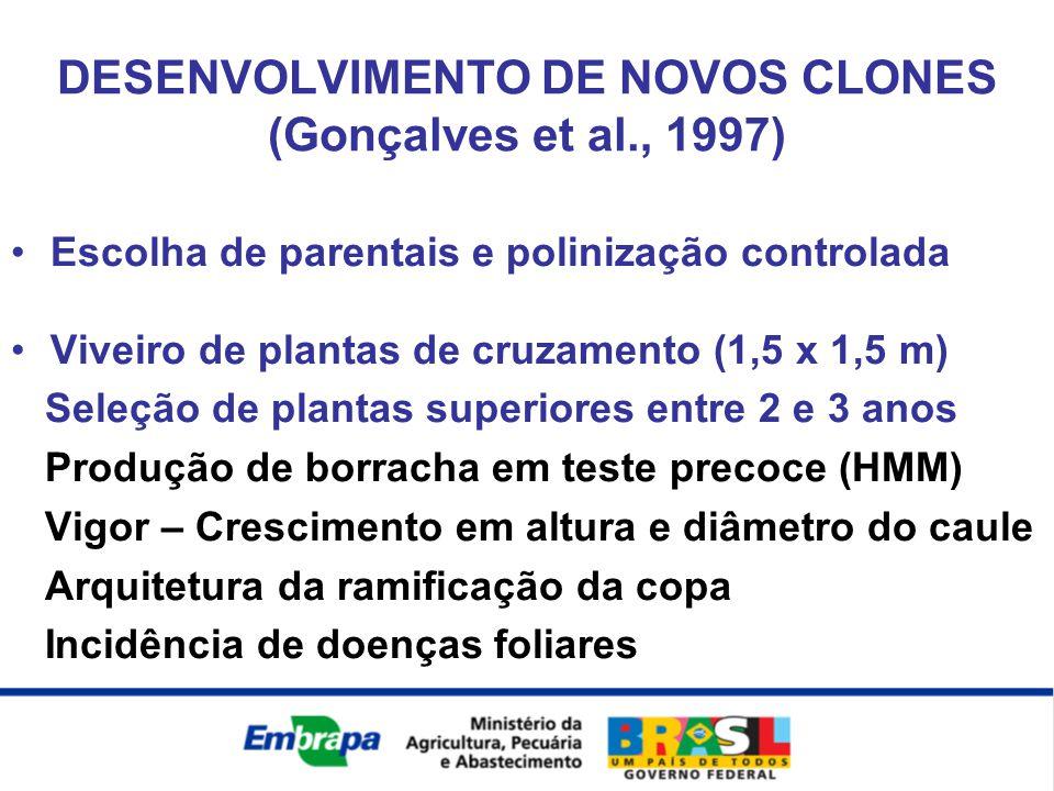 DESENVOLVIMENTO DE NOVOS CLONES (Gonçalves et al., 1997)