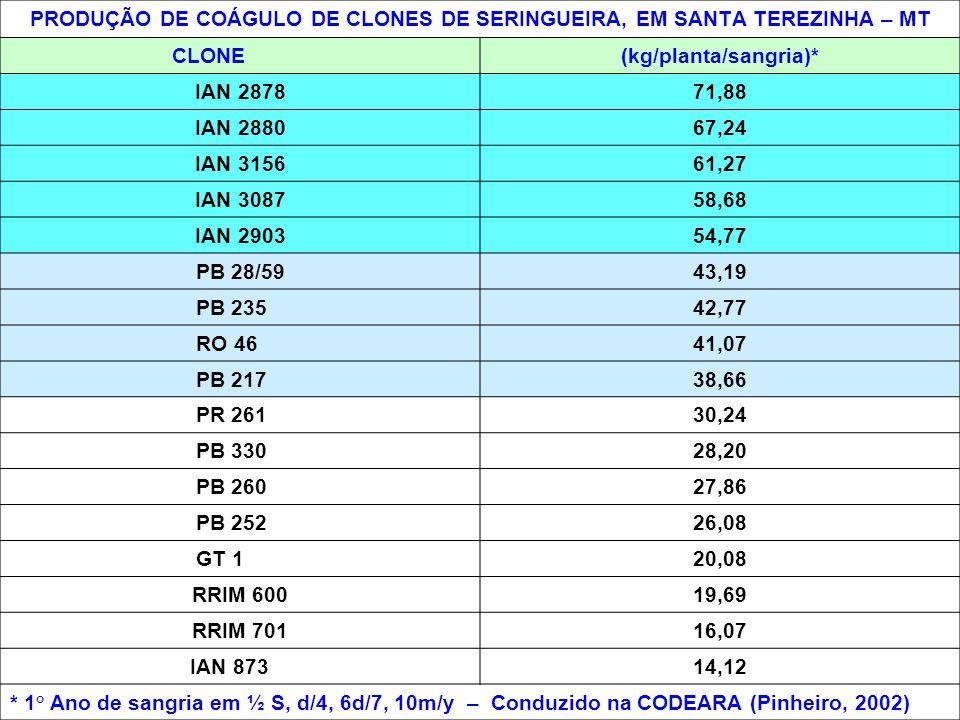 PRODUÇÃO DE COÁGULO DE CLONES DE SERINGUEIRA, EM SANTA TEREZINHA – MT