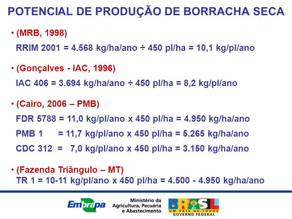 POTENCIAL DE PRODUÇÃO DE BORRACHA SECA