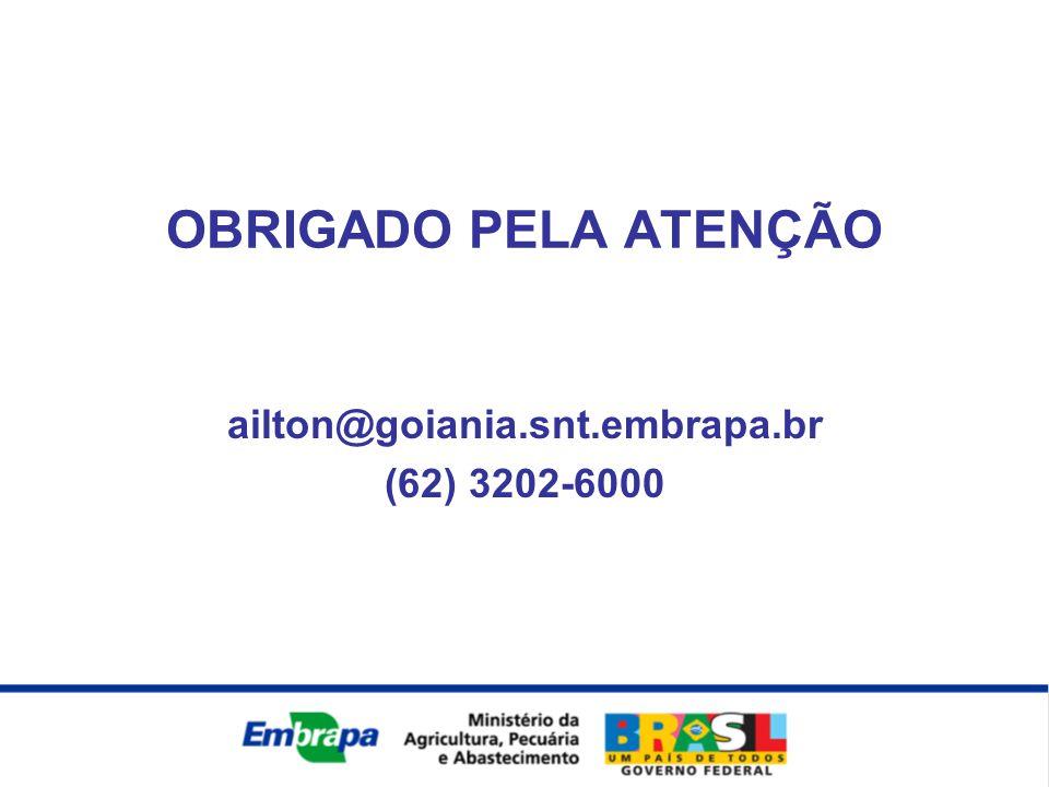 OBRIGADO PELA ATENÇÃO ailton@goiania.snt.embrapa.br (62) 3202-6000