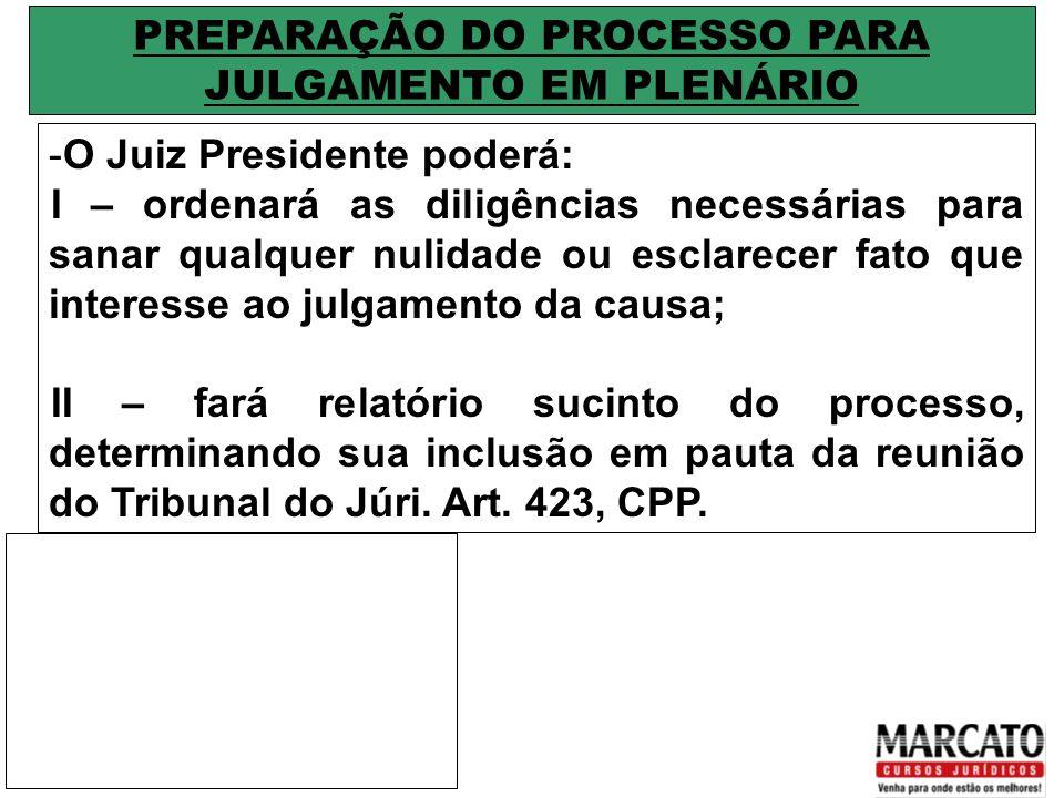 PREPARAÇÃO DO PROCESSO PARA JULGAMENTO EM PLENÁRIO