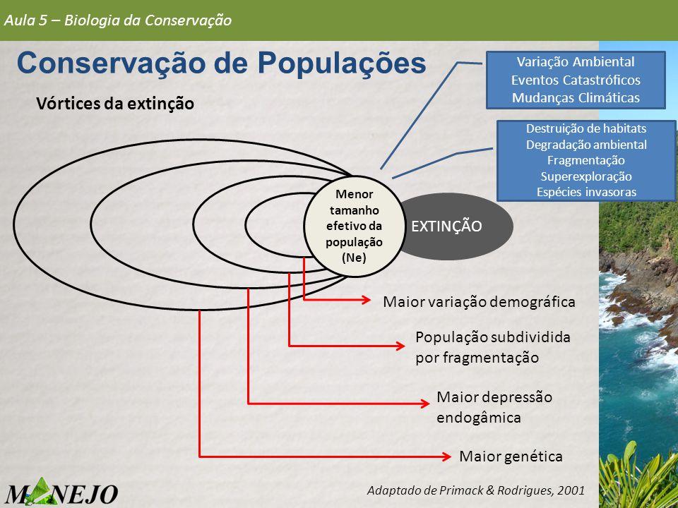 Conservação de Populações Menor tamanho efetivo da população (Ne)