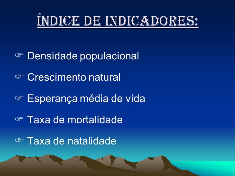 Índice de indicadores: