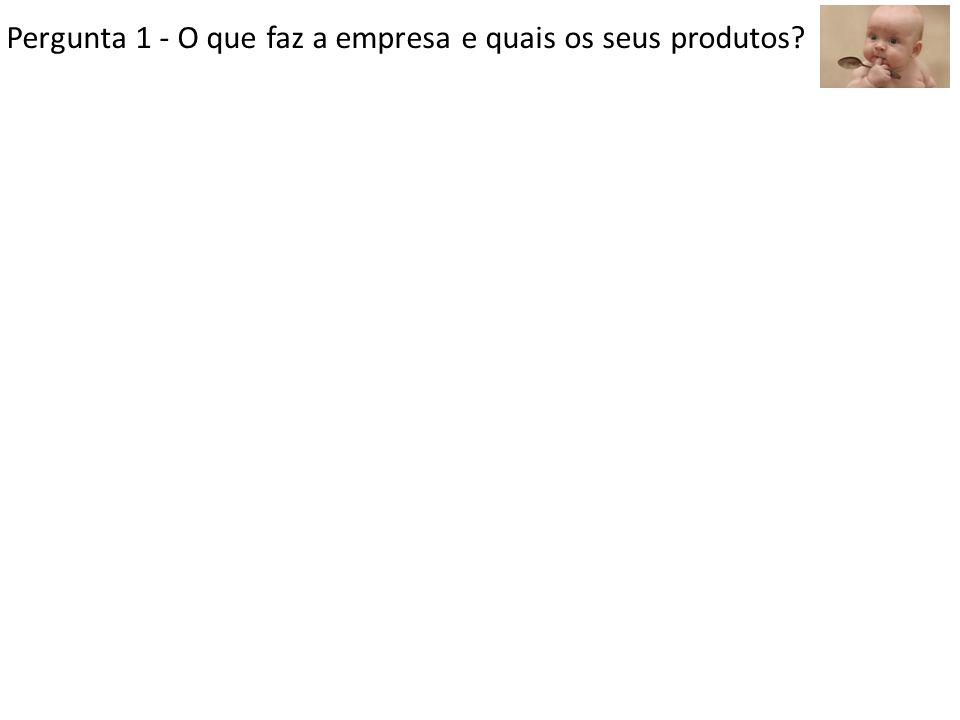 Pergunta 1 - O que faz a empresa e quais os seus produtos