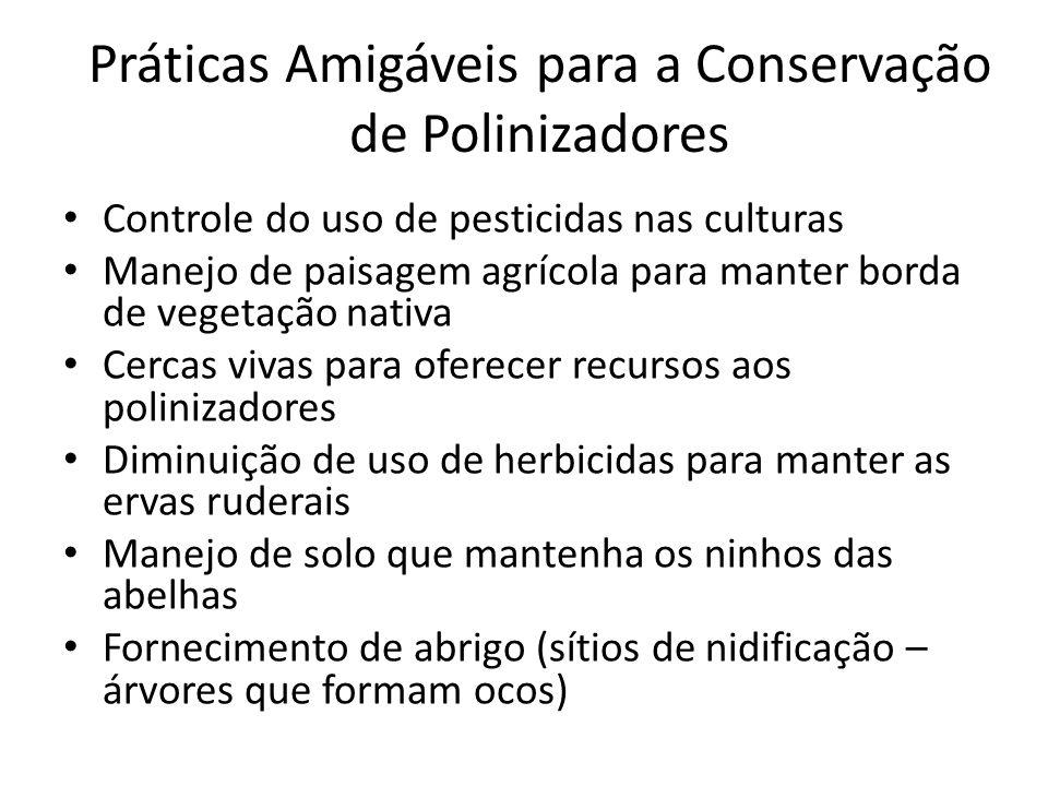 Práticas Amigáveis para a Conservação de Polinizadores